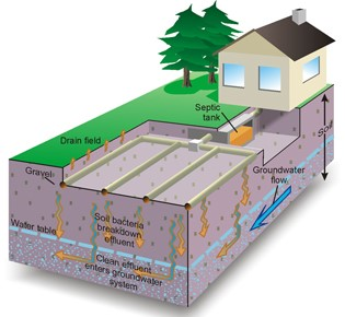 Septic system diagram - Septic Tank and Drain Field